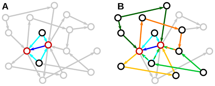 Connectivity induces correlations